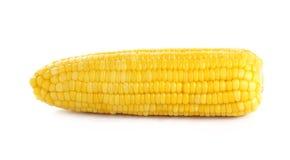 背景玉米甜白色 免版税库存照片