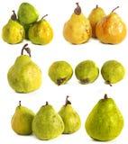 背景玻璃梨s基体白色 在背景的水多的鲜绿色和黄色梨 免版税库存照片