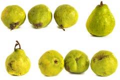 背景玻璃梨s基体白色 在被隔绝的背景的水多的鲜绿色和黄色梨 免版税库存图片