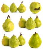 背景玻璃梨s基体白色 在被隔绝的背景的水多的鲜绿色和黄色梨 免版税图库摄影