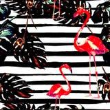 背景球海滩美好的空的夏天排球 水彩无缝的样式 与夏威夷树的手画热带夏天主题 免版税图库摄影