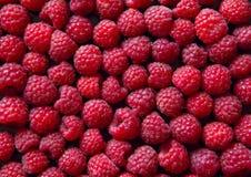 背景甜新鲜的莓特写镜头 库存照片
