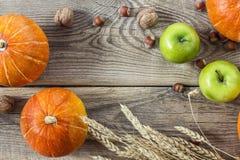背景用南瓜、坚果、麦子的苹果和耳朵在老 免版税库存照片