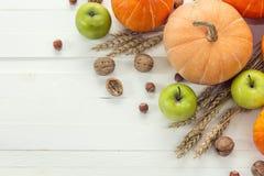 背景用南瓜、坚果、麦子的苹果和耳朵在wh的 图库摄影