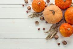 背景用南瓜、麦子的坚果和耳朵在白色木头的 库存图片