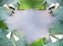 背景用在圆白菜叶子的青纹干酪 免版税图库摄影