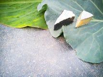 背景用在圆白菜叶子的青纹干酪 免版税库存图片