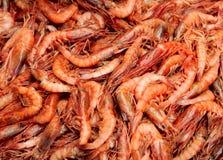 背景用新鲜的桃红色虾 免版税库存图片