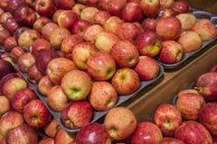 背景用新鲜的红色苹果 免版税图库摄影