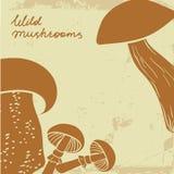 背景用狂放的手拉的蘑菇 可以是 免版税库存照片