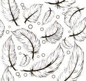 背景用羽毛装饰无缝 图库摄影