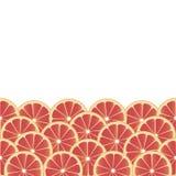 背景用葡萄柚。 免版税库存照片