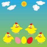 背景用鸡蛋和小鸡 库存图片
