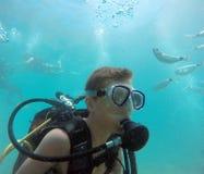 背景男孩潜水查出屏蔽水肺微笑的白色 免版税库存照片
