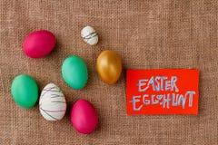 背景男孩逗人喜爱的复活节彩蛋蛋新草绿色隐藏的搜索查出搜索白色 库存照片