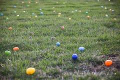 背景男孩逗人喜爱的复活节彩蛋蛋新草绿色隐藏的搜索查出搜索白色 图库摄影