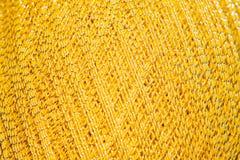 背景的令人惊讶的金毛线 库存图片