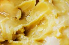 背景的可口,甜蜂蜜 图库摄影