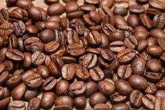 背景的咖啡豆纹理 选择聚焦 库存照片
