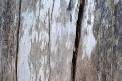 背景的抽象老样式硬木用途 免版税图库摄影