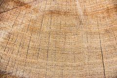 背景的木纹理 免版税库存照片