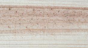 背景的木纹理 库存图片