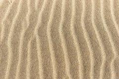 背景的沙滩 库存图片