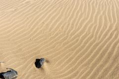 背景的沙滩 免版税库存照片