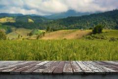 背景的老木地板 库存图片