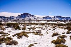 背景的雪纹理 库存图片