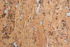 背景的黄柏板 工业自然的产品 库存图片