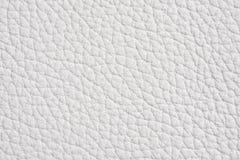 背景皮革白色 免版税图库摄影