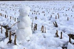 背景看板卡圣诞节人新的s雪年 免版税库存照片