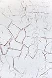 背景破裂的白色 免版税库存图片