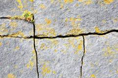 背景破裂的花岗岩 库存照片