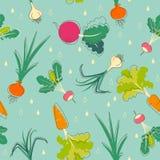 背景硬花甘蓝红萝卜无缝的蕃茄蔬菜 向量例证