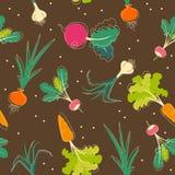 背景硬花甘蓝红萝卜无缝的蕃茄蔬菜 皇族释放例证