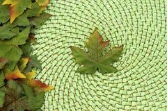 背景秋天叶子槭树柳条 免版税图库摄影