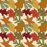 背景秋天叶子重复无缝 免版税图库摄影