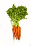 背景空白束的红萝卜 免版税库存照片