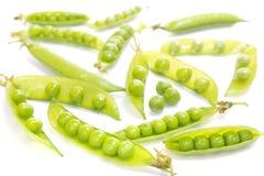背景空白绿豆的荚 免版税图库摄影