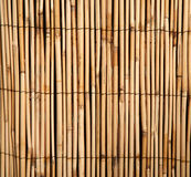 背景竹子模式 免版税库存照片