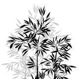 背景竹极其叶子宏指令静脉 竹子的上面 向量例证