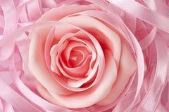 背景粉红色玫瑰色婚礼 库存照片