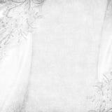 背景精美白色 免版税图库摄影