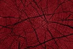 背景红色木 图库摄影
