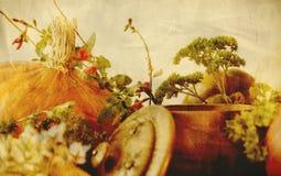 背景纹理用南瓜、红萝卜、种子、胡桃南瓜和草本-与季节性菜的静物画构成  免版税库存照片