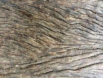 背景纹理的木头 库存照片