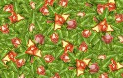 背景细部图花卉向量 红桃红色玫瑰花的芽在绿色叶子的 免版税库存图片