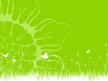 背景绿色本质 免版税库存照片